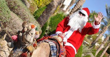туры в тунис на новый год