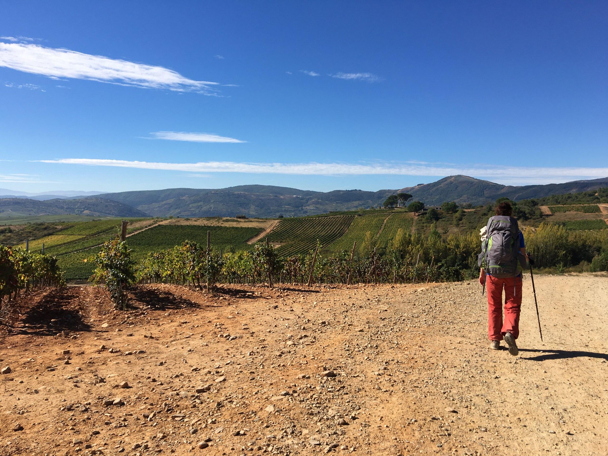 по пути в Вильяфранка-дель-Бьерсо