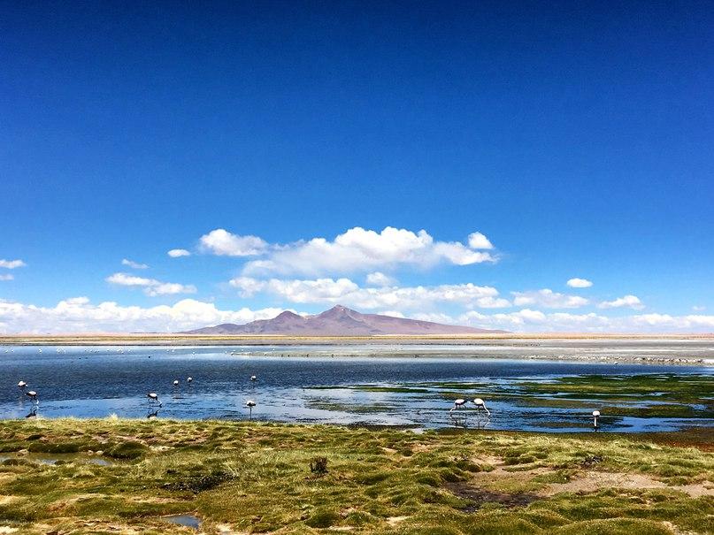 и Salar de Tara (соляное озеро Тара).