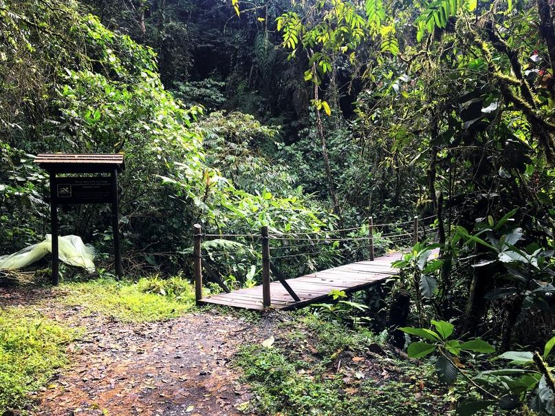 путь к водопаду Сан Рафаэль