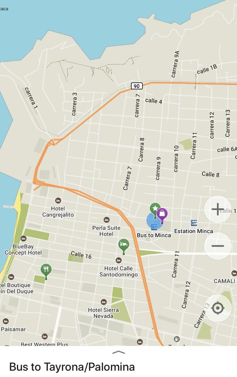 остановка автобусов идущих в нац. парк Тайрона, деревушку Паломино и до мест между этими двумя точками, такие как Playa Grande