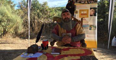 рыцарь с соколом