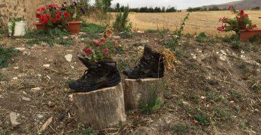 ботинки пилигрима на пути в белорадо