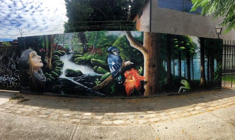 граффити в городе Талька, Чили